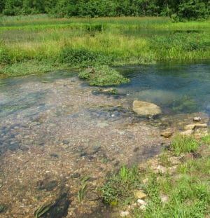 Trout Headwaters Latest RecentWORK